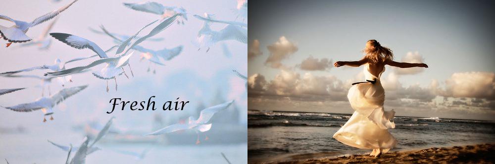 jlt-fresh-air