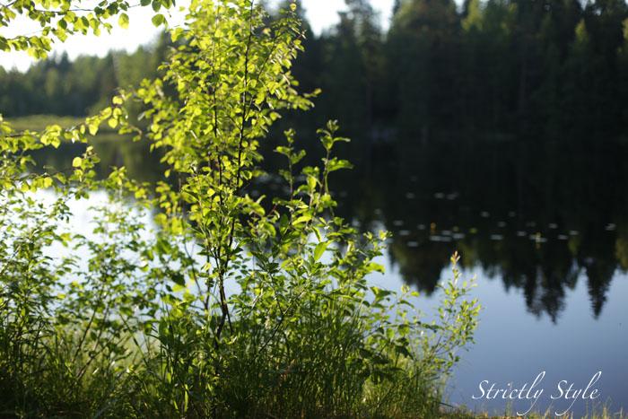 finnishmidsummer2013juhannusIMG_5456