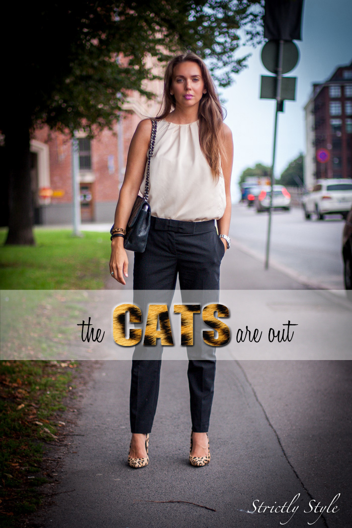 catsrout