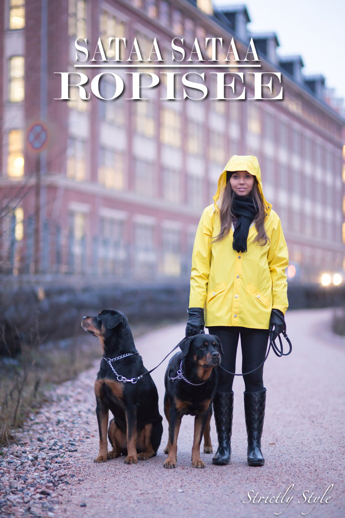 rain-coat-with-dogs-2-of-7