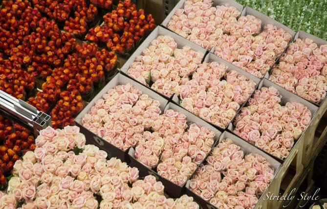 aalsmeer flower auction flora holland (32 of 39)