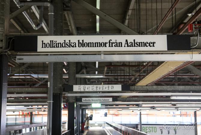 aalsmeer flower auction flora holland (37 of 39)