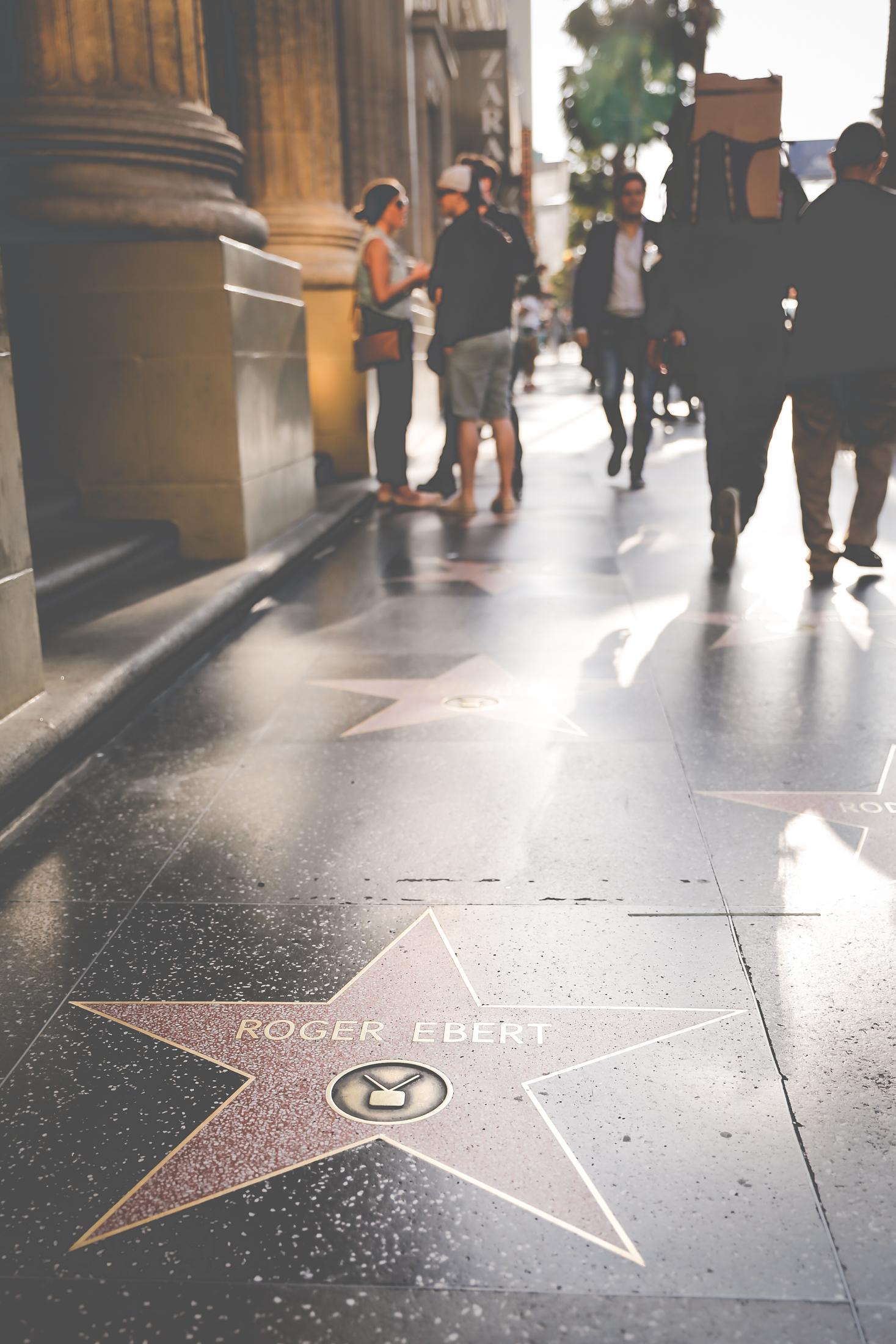 hollywoodboulevard-2932