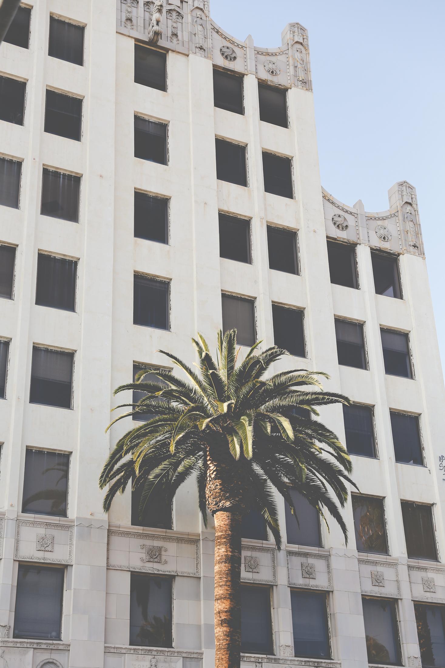 hollywoodboulevard-2953