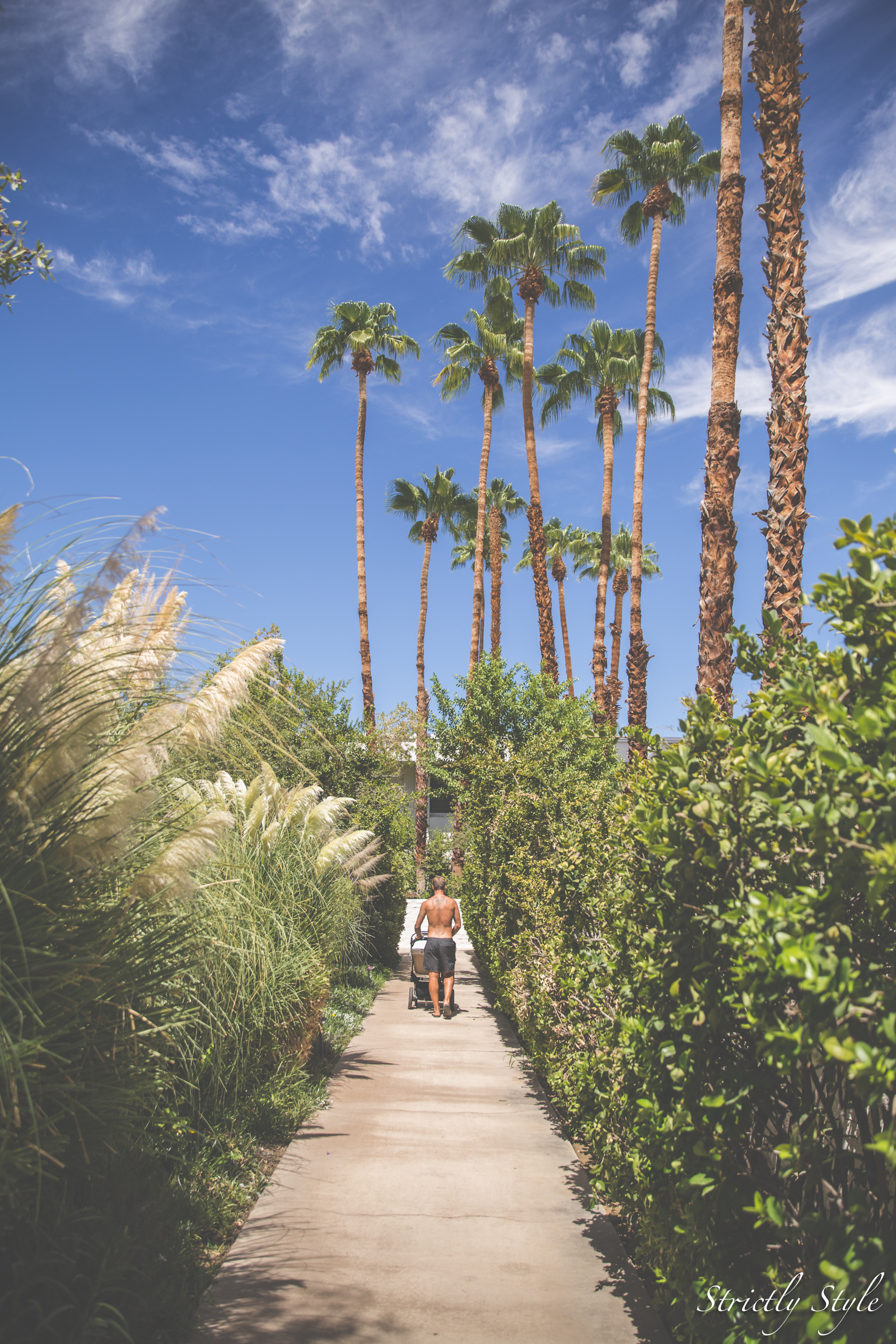palm springs parker-1753