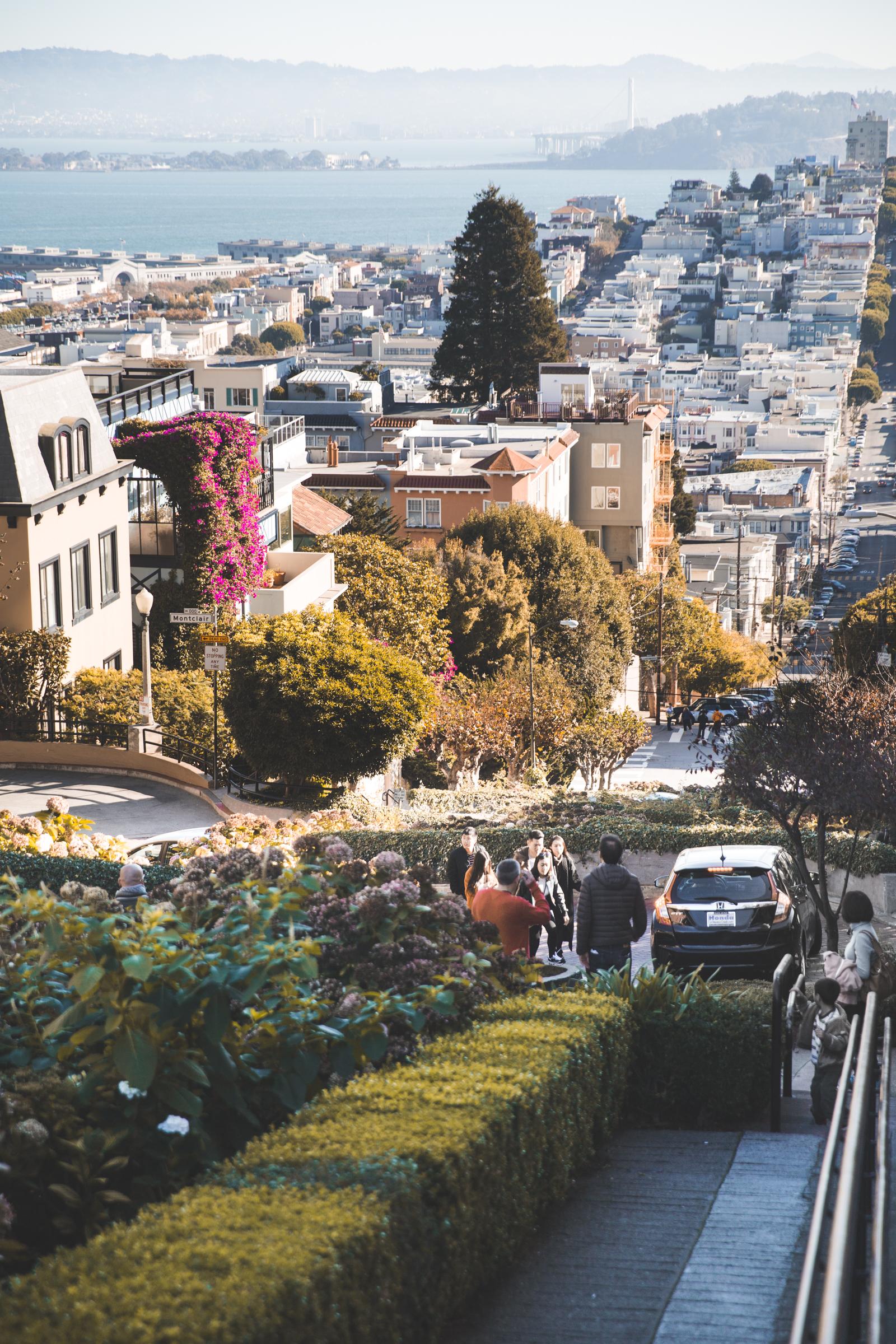 San Fran City-8814