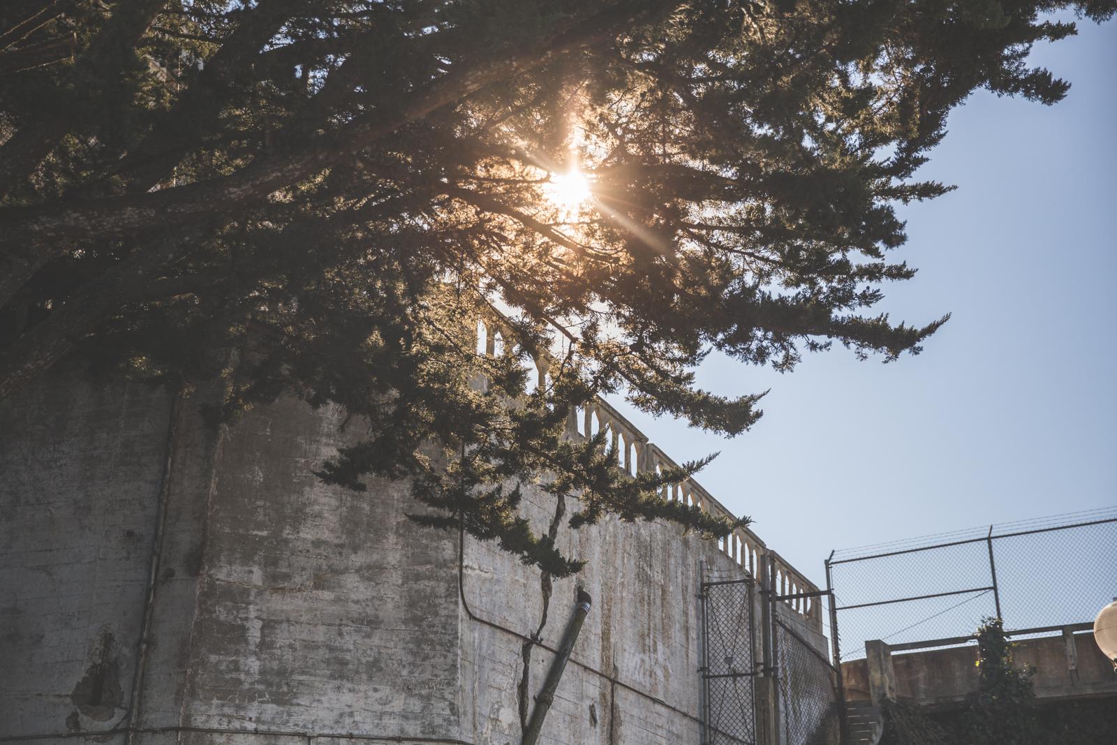 alcatraz-8982