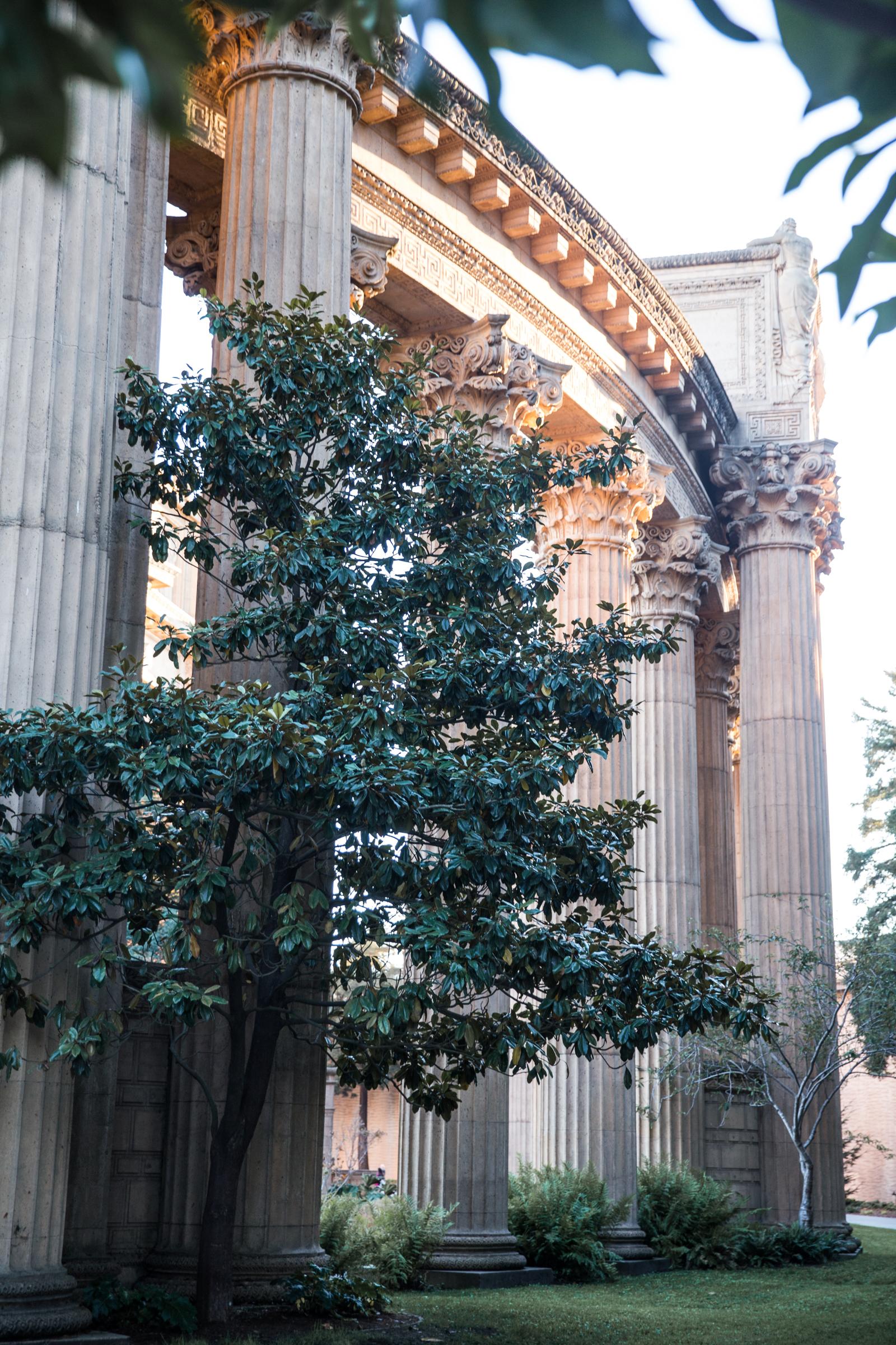 palace of fine arts san francisco-9323