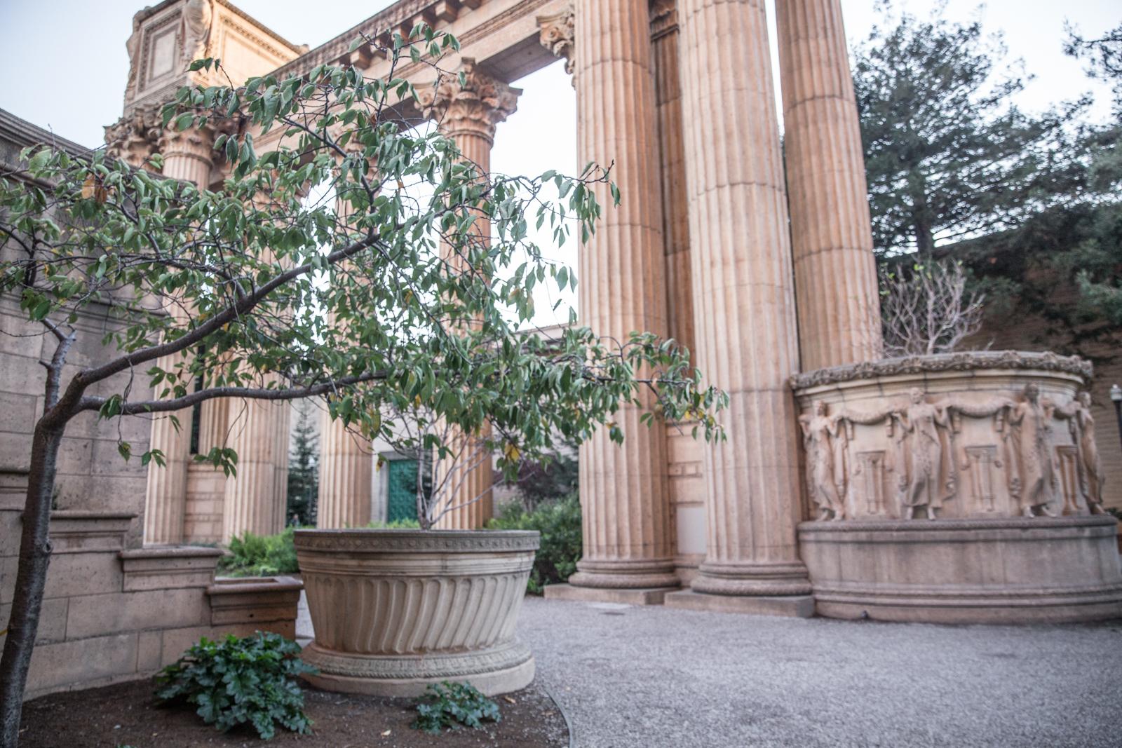 palace of fine arts san francisco-9410